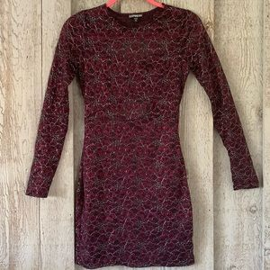 Express Lace Bodycon Dress